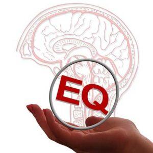 Kecerdasan Emosi (EQ)